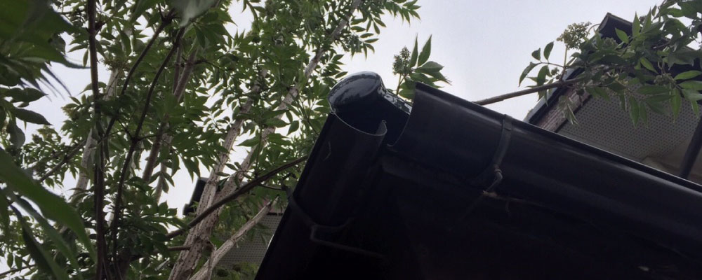 雨樋の継手の破損